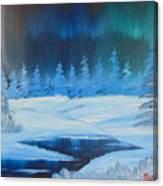 Winter Aurora Canvas Print