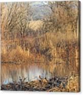 Winter Beaver Dam Charm Co     Canvas Print