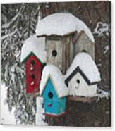 Winter Birdhouses Canvas Print