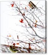 Winter Birds 1 Canvas Print