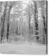 Winter Blast Canvas Print