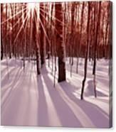 Winter Bling Canvas Print