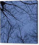 Winter Blue Sky Canvas Print