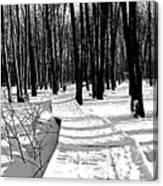 Winter Boardwalk In Black And White Canvas Print