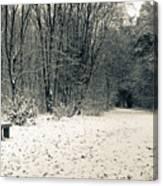 Winter Bridleway Canvas Print