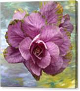 Winter Cabbage Canvas Print