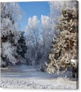 Winter Charm Canvas Print