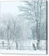 Winter Chill Canvas Print