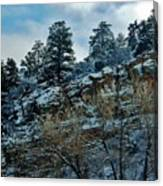 Winter Cliff Canvas Print