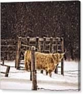 Winter Coat Canvas Print