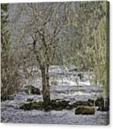 Winter Colors On The Klawock Canvas Print