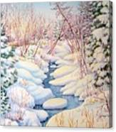 Winter Creek 1  Canvas Print