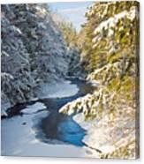 Winter Creek In Morning Light Canvas Print