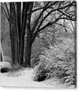 Winter Day - Black And White Canvas Print
