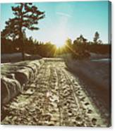 Winter Driveway Sunset Canvas Print