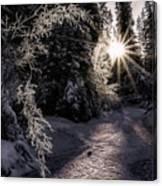 Winter Evening Canvas Print