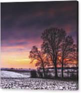 Winter Fields Canvas Print