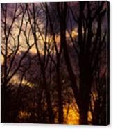 Winter Forest Sunrise Canvas Print