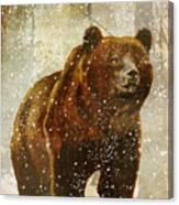 Winter Game Bear Canvas Print