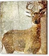 Winter Game Deer Canvas Print