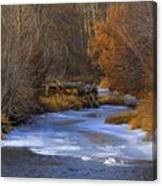 Winter Gold On The Yakima River Canvas Print