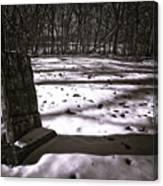 Winter Grave Canvas Print