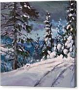 Winter Grays 2 Canvas Print