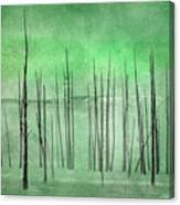 Winter Green  7913green Canvas Print