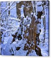 Winter Guest Canvas Print