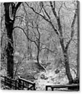 Winter, Ham Burn, Whitley Mill Canvas Print