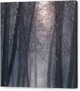 Winter Hush Canvas Print