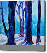 Winter Impression Canvas Print