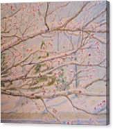 Winter In Eden Park Canvas Print
