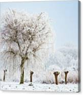 Winter In Holland Canvas Print