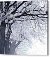 Winter In Our Street Canvas Print