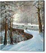 Winter In Pavlovsk Park Canvas Print