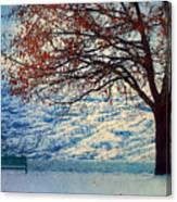 Winter In Peachland Canvas Print