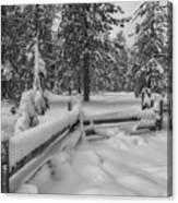 Winter In The Sierra Canvas Print