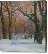 Winter In The Wood Canvas Print