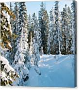 Winter In Yellowstone Canvas Print