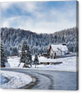 Winter Lands Canvas Print