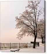 Winter Landscape 1 Canvas Print