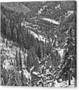 Winter Landscape In Giurgeu Mountains Canvas Print