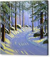 Winter Landscape Study 1 Canvas Print