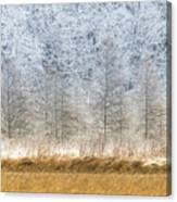 Winter Layers Canvas Print