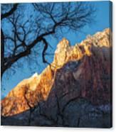 winter Light 2 Canvas Print