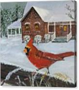 Winter Male Cardinal Canvas Print