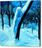 Winter Moonlight And Snow Canvas Print