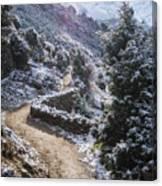Winter Mountain Path Canvas Print