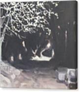 Winter Night Canvas Print